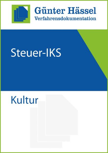 Steuer-IKS Kultur
