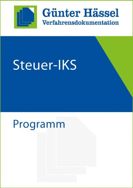 Steuer-IKS Programm